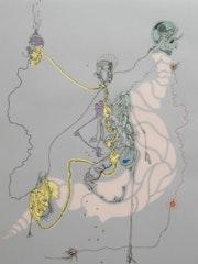 The shared identity. Gaelle Thieltgen