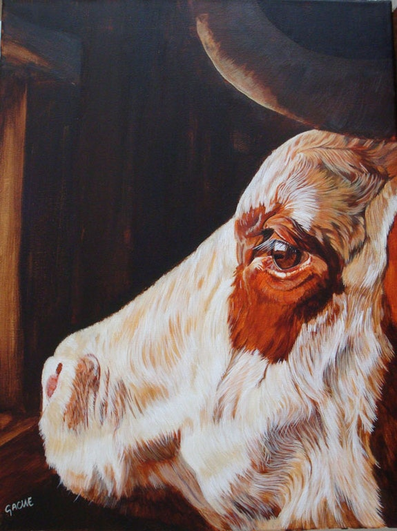 Portrait de vache abondance. Gache Gache
