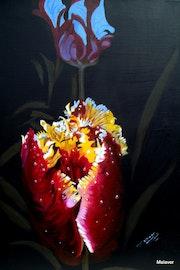 Tulpen in der Nacht.