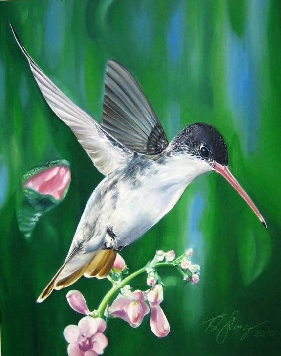 The small snake and the hummingbird. Thomas Stenger Thomas Stenger