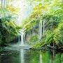 Schöne Wasserfälle in den Wäldern ... . Didier Dalent