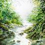Petit ruisseau serpentant vers la lumière…. Didier Dalent