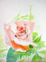 Coeur de rose….