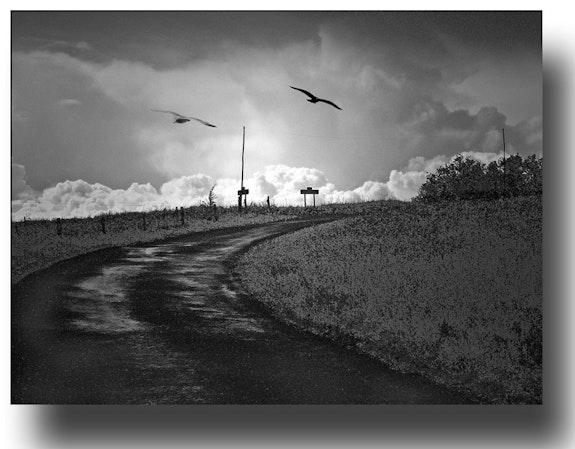 Road. Gilles Bizé Gilles Bizé