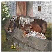 Vieux et jeunes élevage de chevaux .