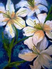 Casablancas (Lilys, fleurs blanches).
