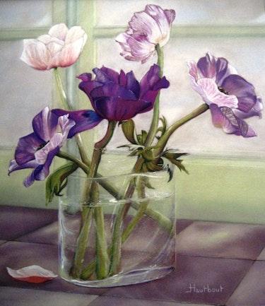 Anemones. Jacqueline Hautbout