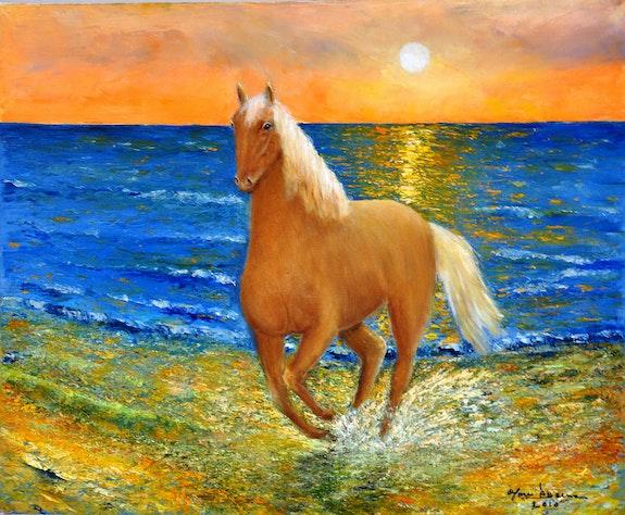 Gallop on the beach. Marc Lejeune Marc Lejeune
