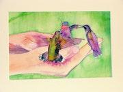 Colibris aprivoisés. Maria Dolores Fernandez