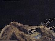 Le Chat. Erick Kunze