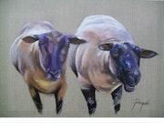 Sheep Mancy.