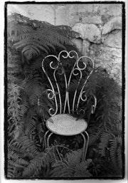 Chaise et fougère. Annet Nedelec