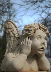 Angel thoughtfully.