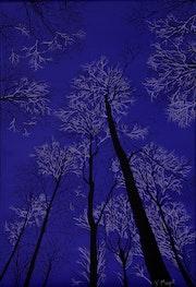Midnight Blue.