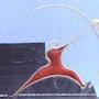 Robin de l'environnement. Armand Payami