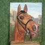 Pferd. Lionel Fiore