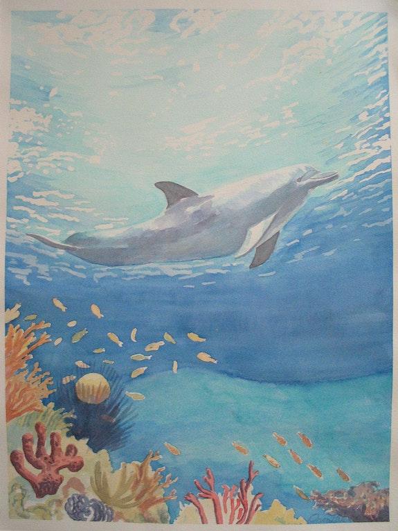 La libertad de los océanos. Orion Hale Orion Hale