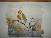 Illusion d'optique 2; Oiseaux.