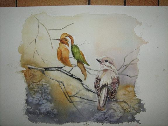 Illusion d'optique 2; Oiseaux. Daniele Jondeau Dany