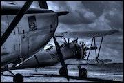 Avions biplans.