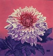 Chrysanthemum. Ivanna Shmeleva