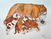 English bulldog maternity, gouache.