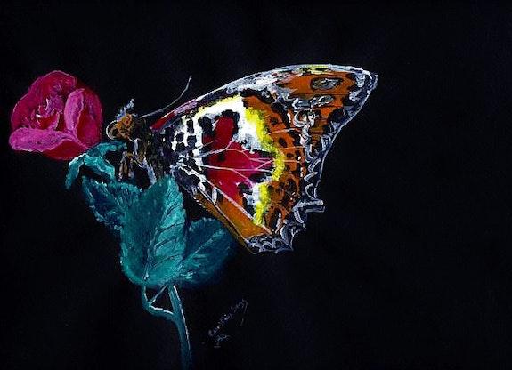 Papillon de jour la nuit.  Serge Coco-Viloin