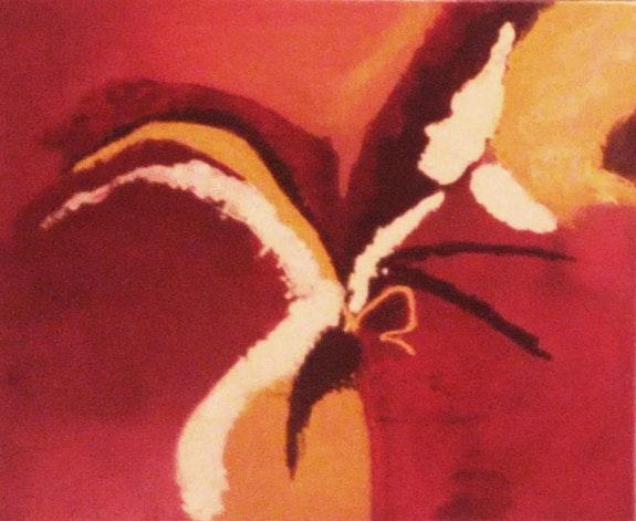 Colors, animals, rainbow, red. Birds, illusions.. Lola Manaut Pascual Roser Nou