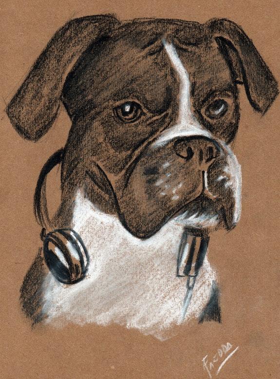 Dog. Jose Faedda Jose Faedda