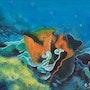 Les fonds marins. Ghislaine Phelut