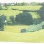 Northaw/Cuffley Hertfordshire. D Gaffney
