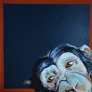 Chimp. Delphine Pellizzer