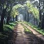 Le chemin dans la forêt. Catherine Wernette