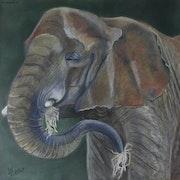 Le repas de l'éléphant.