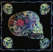 Crystal Skull. Brahma Templeman