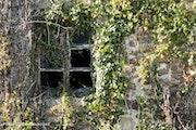 Fenêtres. Thierry Gouvernet