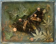 Secretes Only Moths Know. Chelsea Brock