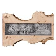 Fine Art Cebra Común sobre madera de Fresno. Alberto Carrera