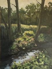 Sonnenlicht im dunklen Wald. Martina Philippi