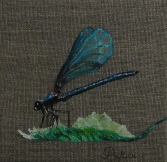 The Dragonfly. Patricia De Chadois Patricia De Chadois