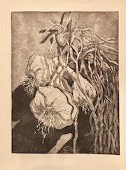 Griechischer Knoblauch im Sonnenlicht. Martina Philippi
