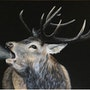 Le brame du cerf. Pastel & Peinture Moser