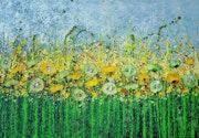 Meadow flower feast. Cinzia Mancini