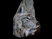 Lynx du Canada.