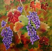 La vigne fin octobre.