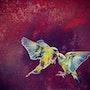 Le baiser de la Paruline. Isabelle Le Pors