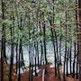 Lac Reynaud Mont Tremblant.. Françoise-Elisabeth Lallemand