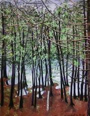 Lac Reynaud Mont Tremblant..
