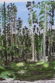 La Forêt des Vosges.