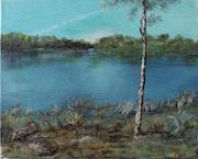 Draveil, les étangs en bord de Seine..
